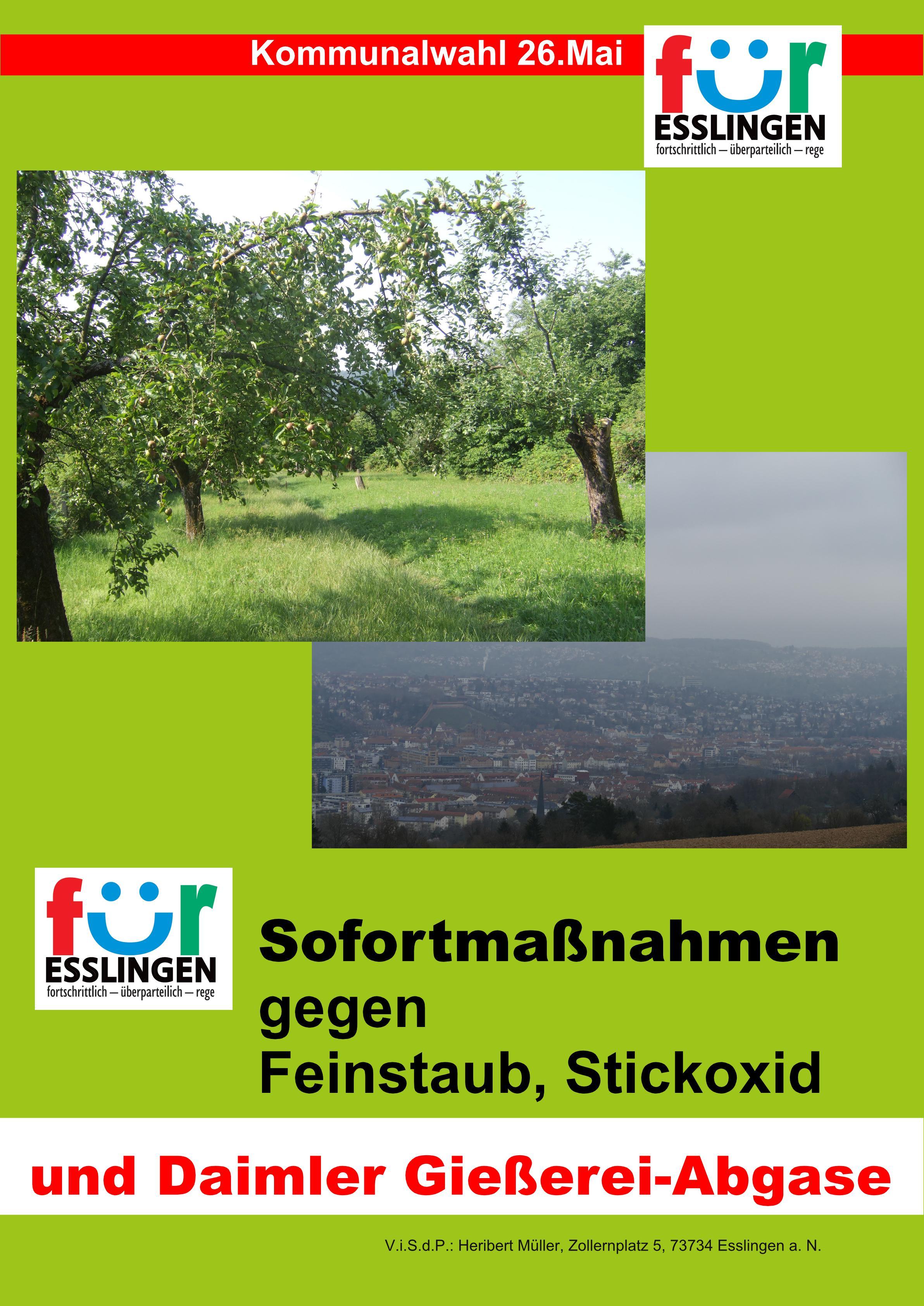 2019_03_01_GemRtWahl _Gießereiabgase_grün-Seite001